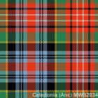 Caledonia Ancient Mediumweight Kilting Cloth By The Metre